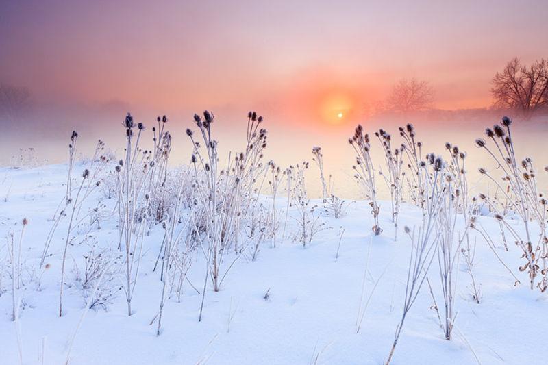 Sawhill Ponds Sunrise