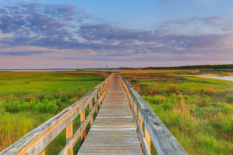 Boardwalk Dreams