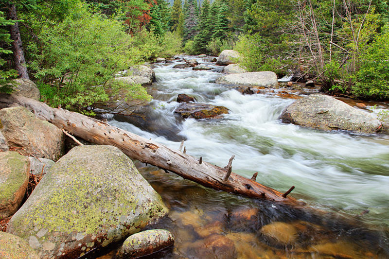 Wild Basin and the Saint Vrain Creek