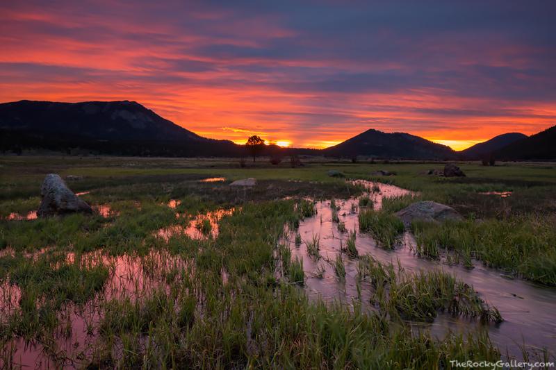Creek Mountain Colorado Park,colorado,cub Creek