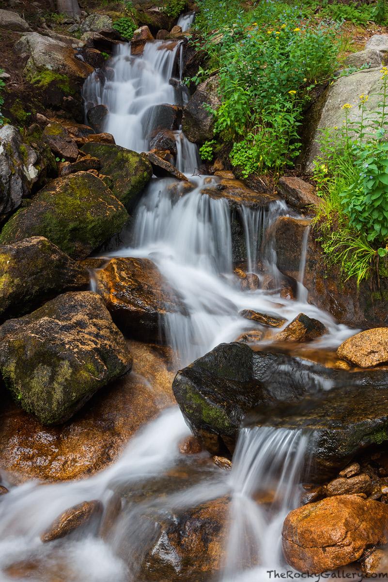 Alpine Brook,Tahosa Valley,Longs Peak,Enos Mills,August,RMNP,Landscape,Photography,Estes Park,Colorado,Rocky Mountain National Park,Stream,Longs Peak Trailhead,Longs Peak, photo