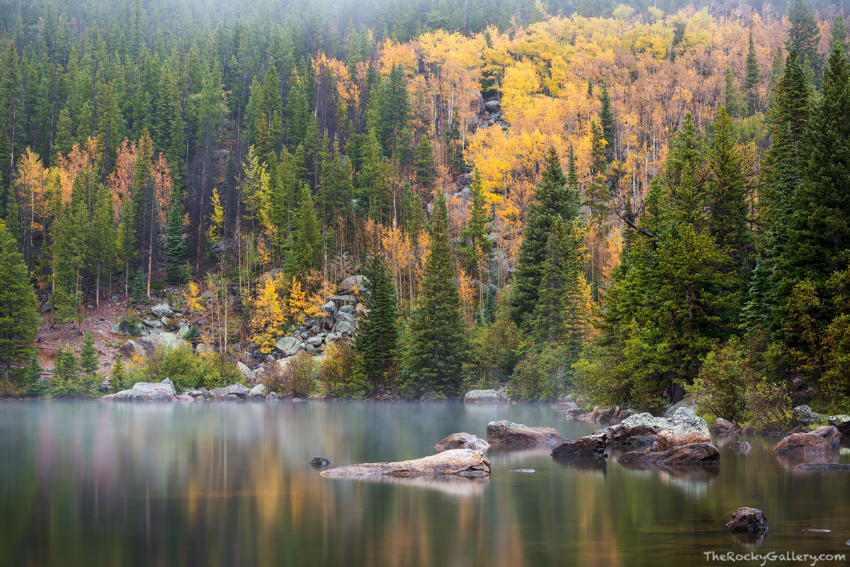 Bear Lake,September,Fall,Autumn,Fog,RMNP,Bear Lake Trailhead,Colorado,Rocky Mountain National Park,Estes Park,Bear Lake Road,Aspens,Landscape,Photography, photo