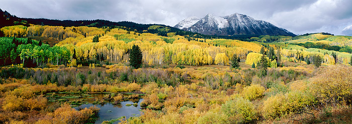 Crested Butte, Colorado, East Beckwith, Fall Color, Aspens, Kebler Pass, photo