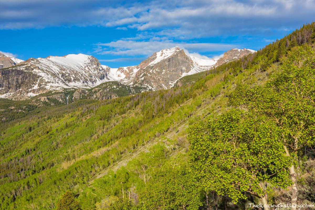 Otis Peak,Hallett Peak,Flattop Mountain,Bierstadt Moraine,Bierstadt Lake,Trailhead,Spring,Aspens,Green,Sunrise,RMNP,Colorado,Rocky Mountain National Park,Estes Park,Bear Lake Road,Landscape,Photograph, photo