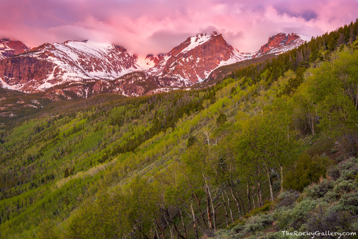 Bierstadt Moraine,RMNP,Bear Lake Road,Hallett Peak,Otis Peak,Flattop Mountain,Sunrise,June,Spring,Aspens,Estes Park,Colorado,Rocky Mountain National Park,Landscape,Photography, photo