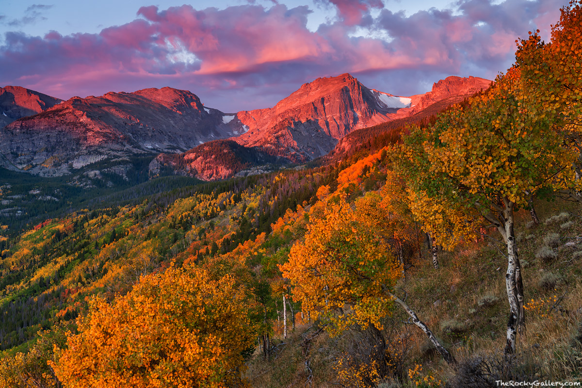 Bierstadt Lake Trailhead,Bear Lake Road,Bierstadt Moraine,Aspens,Fall,Autumn,Golden,Sunrise,Landscape,Photography,Estes Park,Colorado,RMNP,Rocky Mountain National Park,Hallett Peak,Flattop Mountain, photo