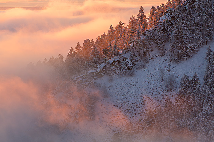 Boulder,Inversion,flatirons,Chautauqua Park,Flagstaff Mountain,Fog,Sunrise,pines,snow,Colorado,Open Space and Mountain Parks, photo