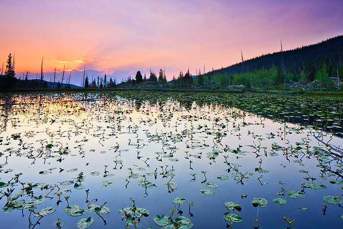 Chickadee Pond,Rocky Mountain National Park,Colorado,Ouzel Lake,Wild Basin,sunrise, photo