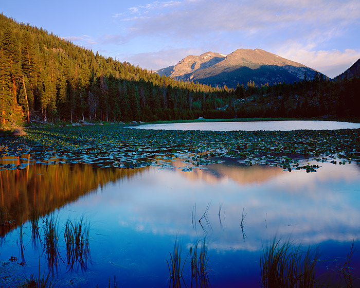 First light bathes Stones Peak from the Cub Lake. Cub Lake is a short 2 mile hike from Moraine Park in Rocky Mountain National...