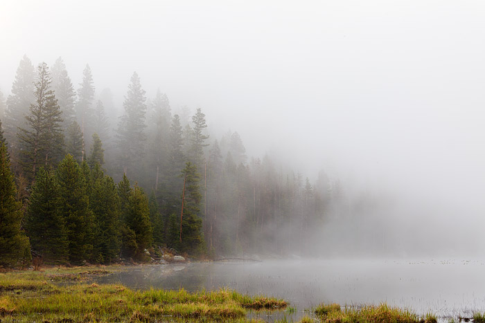 Rocky Mountain National Park, Colorado, Cub Lake, Fog, photo