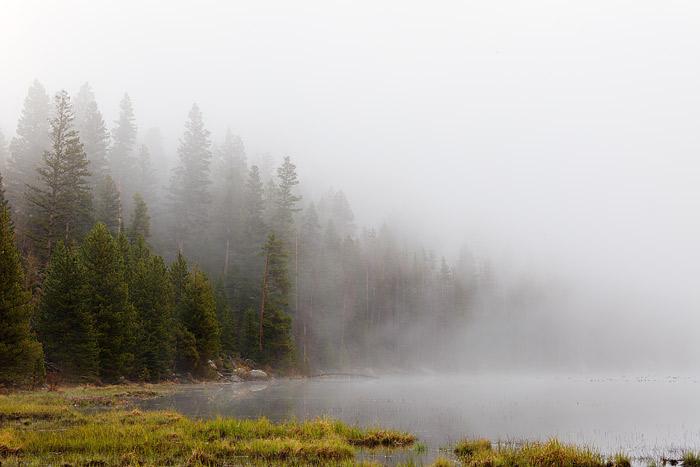 Rocky Mountain National Park, Colorado, Cub Lake, Fog, photo