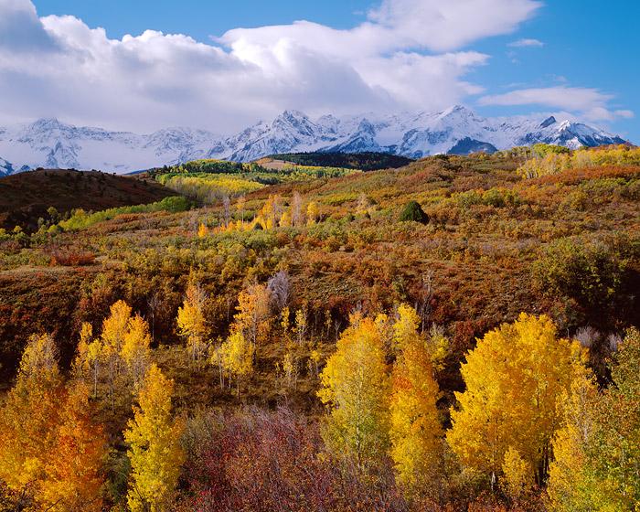 Dallas Divide, Telluride, Ouray, Ridgeway, San Juans, Fall Color, photo
