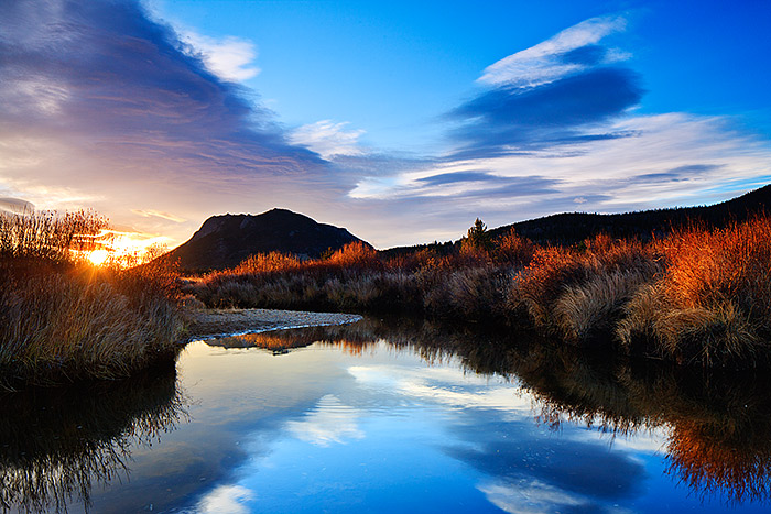 Rocky Mountain National Park,Colorado,Horseshoe Park,Autumn,Fall River,Sunrise,Elk, photo