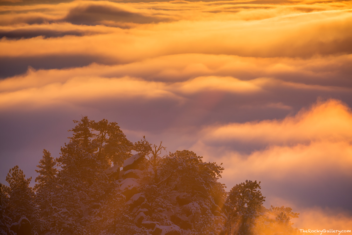 Flagstaff Mountain,Flagstaff Road,OSMP,Open Space and Mountain Parks,Inversion,Weather,February,Raven,Snow,Crown Rock,Boulder,Colorado,Landscape,Photography,Sunrise,Chautauqua Park,Gregory Canyon , photo
