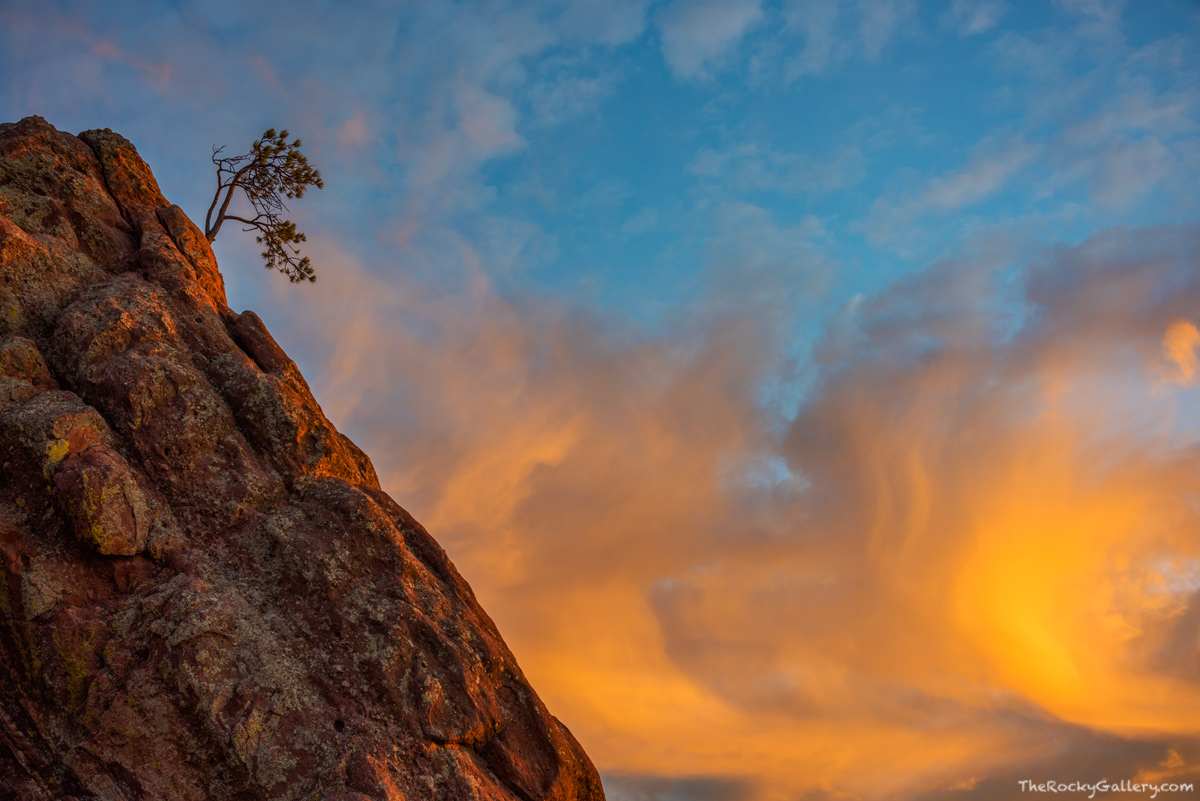 Flagstaff Mountain,OSMP,Boulder,Colorado,Landscape,Photography,Open Space and Mountain Parks,Sunrise,Lone Pine,Crown Rock, photo