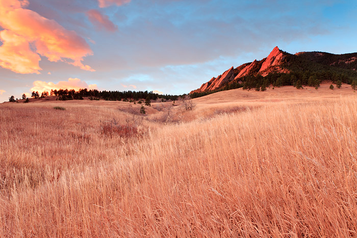 The colors of Autumn fill the meadow of Chautauqua Park in Boulder, Colorado. Bluestem grass is highlighted by the fire like...