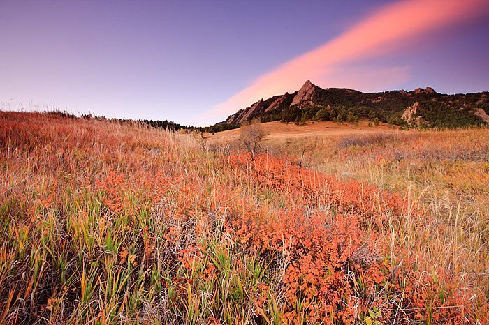 The grasses and trees below Boulder's Flatirons display golden brown and red colors of Autumn. The Flatirons are located in Boulder...