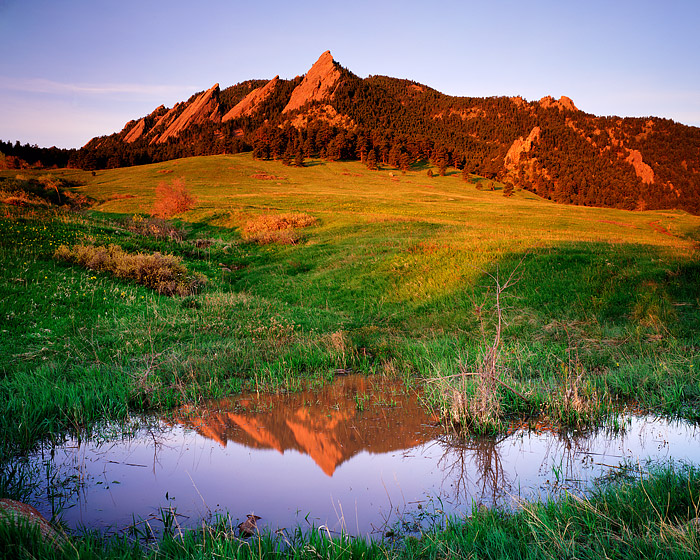 Once every few years, when Boulder has an unusually rainy spring, a small pond forms in Chautauqua Park from the runoff and moisture...