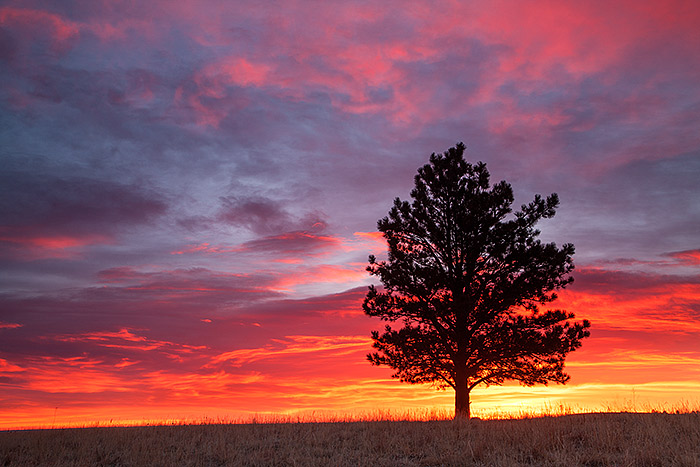 Boulder,Colorado,Open Space,OSMP,Sunrise,colors, photo