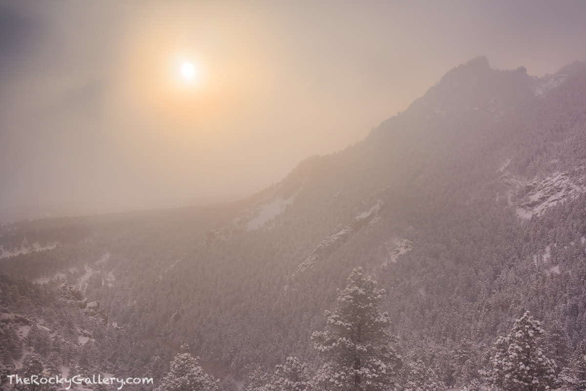 Chautauqua Park,Meadow,Flagstaff Mountain,Flagstaff Road,Gregory Canyon,The Flatirons,Boulder,Snow,Colorado,Ice,Fog,Sun,Landscape,Photography,OSMP,Open Space and Mountain Parks,December,Pines, photo