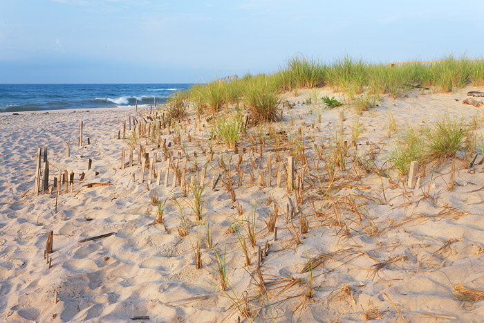 Flying Point Beach, Southampton, New York, Dune Fence, Atlantic Ocean, Long Island, photo