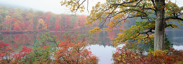 New York, Lake Nawahunta, Harriman State Park, Fall Color, photo