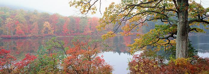 New York, Lake Nawahunta, Harriman State Park, Fall Color, photo