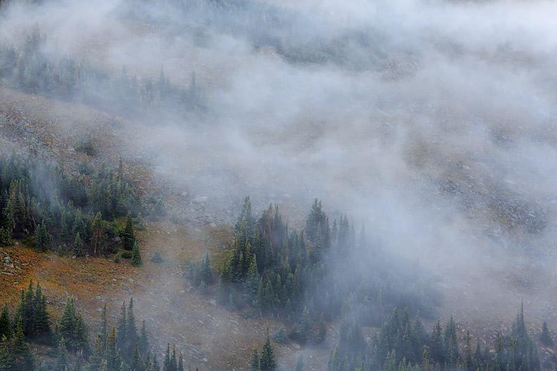 Forest Canyon,Fog,Trail Ridge Road,Rocky Mountain National Park,Colorado,Estes Park,RMNP,Evergreens,Trees,Autumn , photo