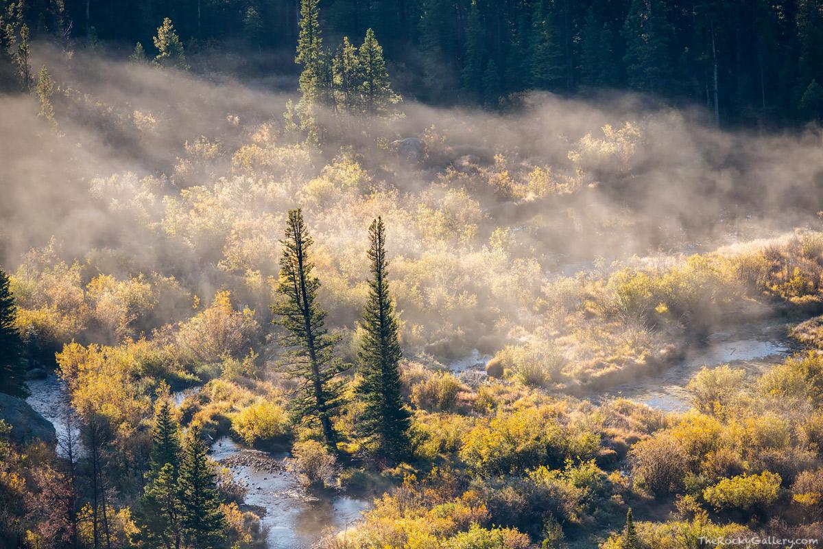 Erik Stensland,Glacier Creek,Bierstadt Moraine,Fog,September,Fall,Autumn,Landscape,Bear Lake Road,Pines,Fog,Colorado,RMNP,Estes Park,Rocky Mountain National Park,Photographer,continental divide,aspens, photo