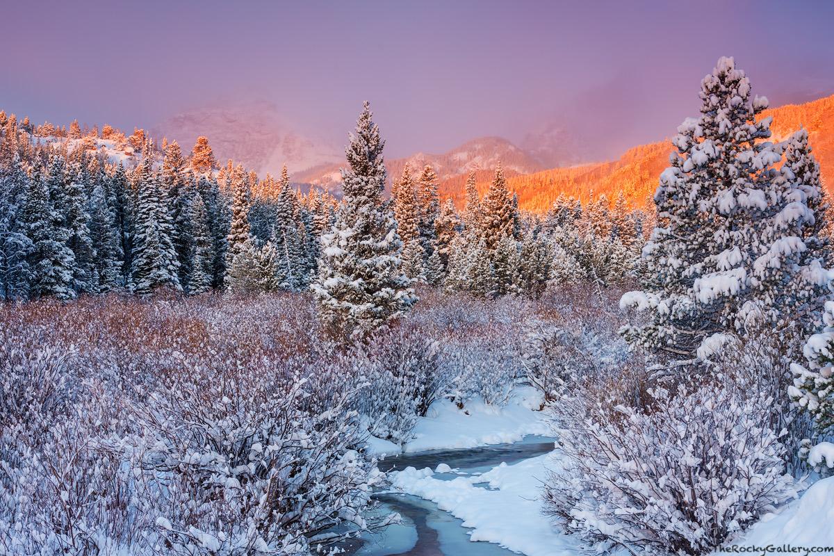 Glacier Creek,Glacier Gorge,RMNP,Rocky Mountain National Park,Colorado,Landscape,Photography,Storm Pass,Trailhead,Bear Lake Road,snow,april,Hallett Peak,willows,bierstadt moraine,Estes Park, photo
