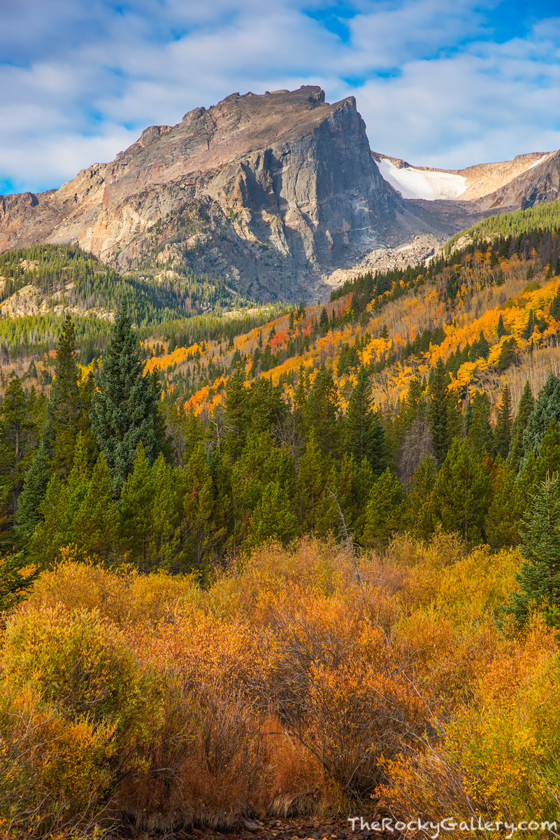 Hallett Peak,Glacier Creek,Willows,Fall,Autumn,Sunrise,October,Storm Pass Trailhead,Bear Lake Road,Estes Park,RMNP,Rocky Mountain National Park,Colorado,Aspens,Bierstadt Moraine,iconic, photo