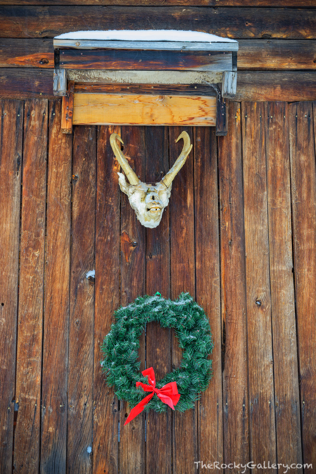 Grand Lake,Smith Eslick Cottage,Christmas,Proghorn,January,Colorado,Rocky Mountain National Park,Motel,RMNP,Grand County,Historical Society,hand of man,skull , photo