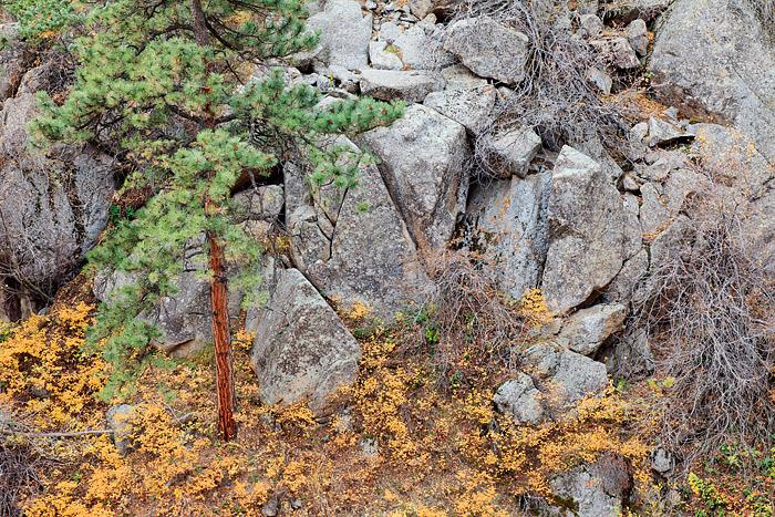 Boulder, Colorado, Open Space, OSMP, Gregory Canyon, Fall, photo