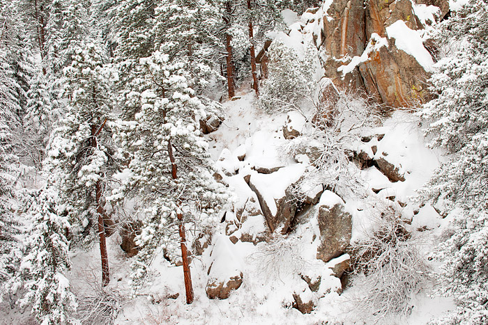Boulder, Coloroado, Winter, Gregory Canyon, Ponderosa Pine, Granite, Snow, photo