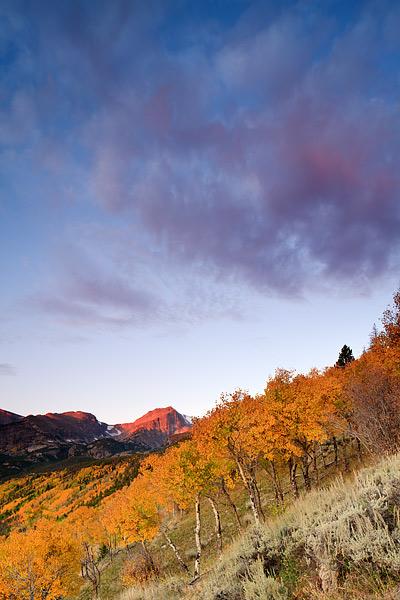Rocky Mountain National Park, Colorado, Autumn, Aspens, Sunrise, photo