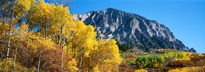 Crested Butte, Kebler Pass, Gunnison, Fall Color, Aspens, Marcellina Mountain, photo
