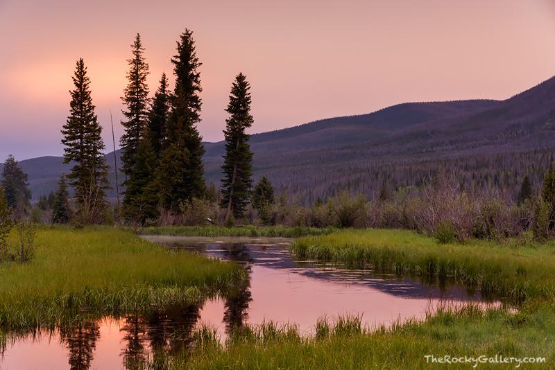 Rocky Mountain National Park, West Side, Kawuneeche Valley, Coyote,RMNP,Grand Lake, Trail Ridge Road, Colorado River,Sunset,Landscape,Photography,Colorado,moose, photo