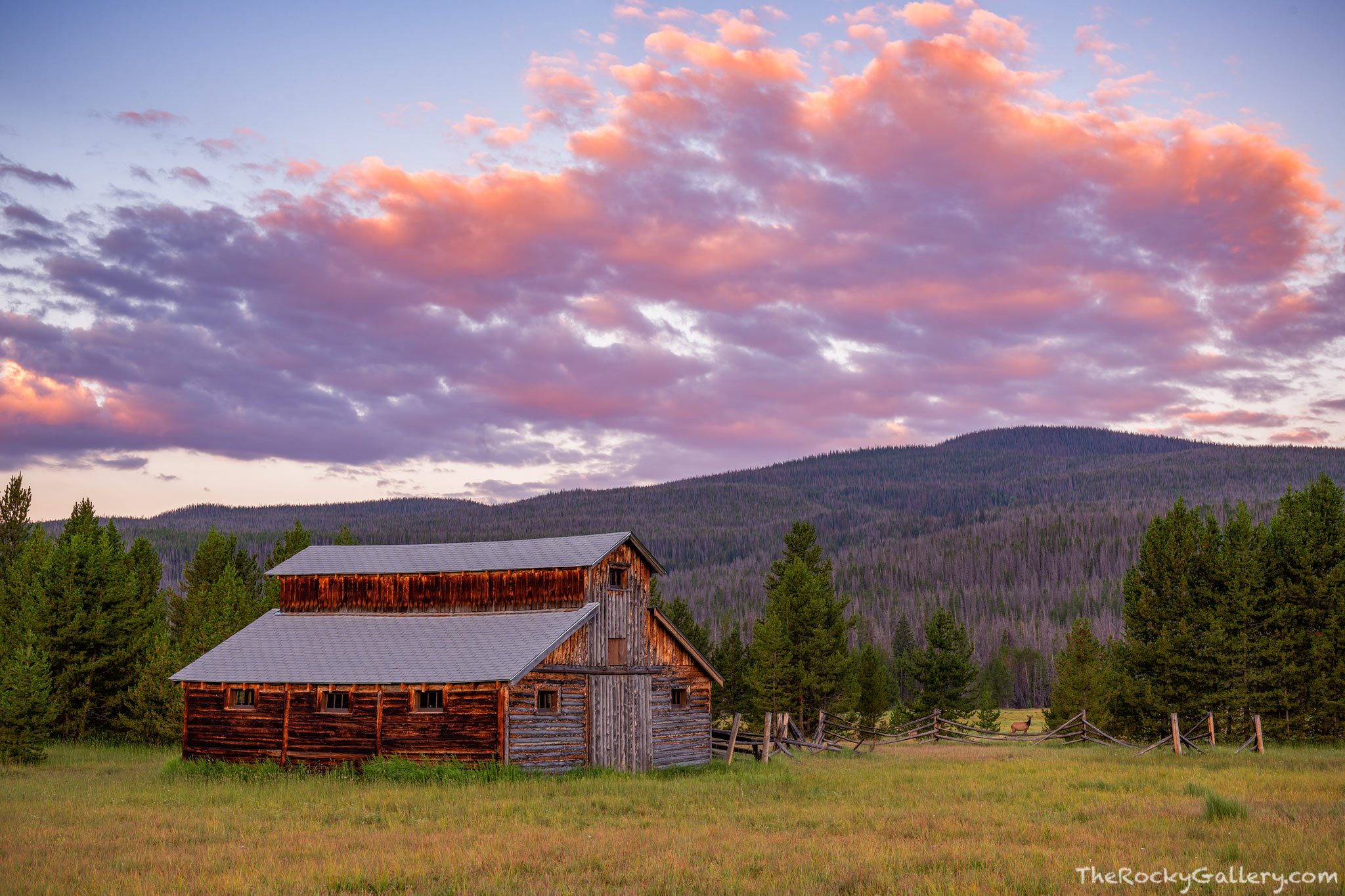 Little Buckaroo Barn,Trail River Ranch,Kawuneeche Valley,Elk,Sunrise,July,Grand Lake,West Side,RMNP,Colorado,Rocky Mountain National Park,Landscape,Photography,Hand of Man,Barn,Never Summer Mountains,, photo
