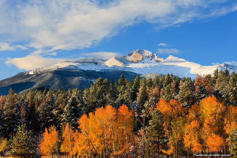 Rocky Mountain National Park, Colorado, Fall Color, Aspens, Beaver Meadows, Snow, photo