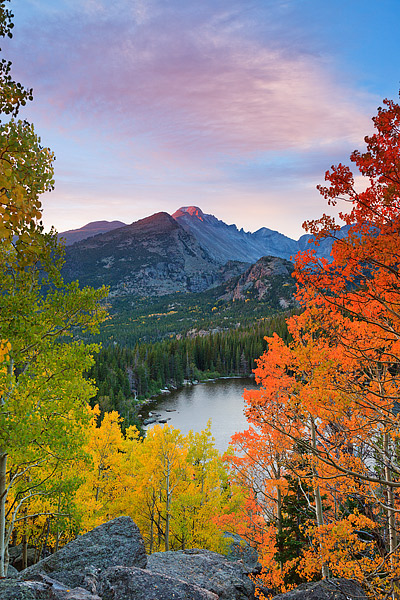 Bear Lake,Rocky Mountain National Park,Longs Peak,Fall Aspens,Colorado,gold, photo