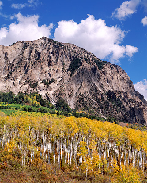Marcellina Mountain, Kebler Pass, Crested Butte, Colorado, Fall, Aspens, photo