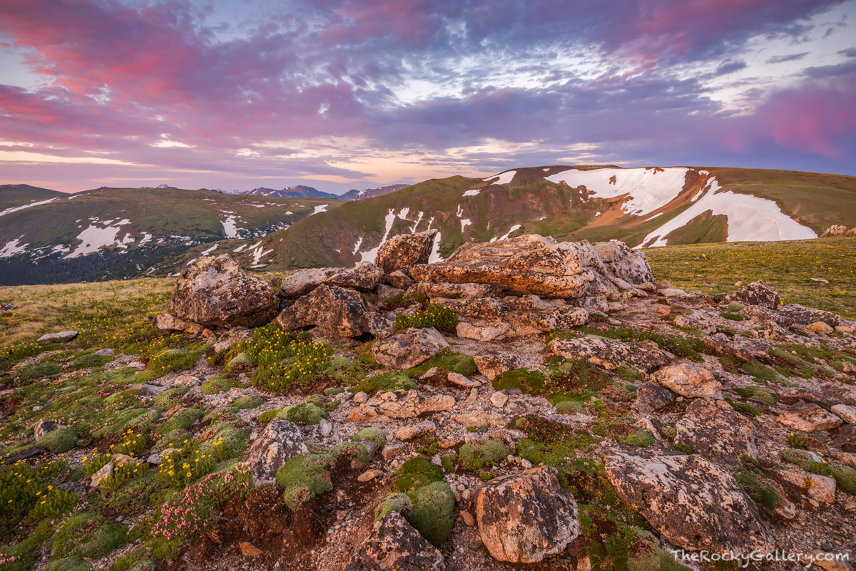 Alpine Visitor Center,Trail Ridge Road,Grand Lake,Estes Park,Colorado,Rocky Mountain National Park,RMNP,Longs Peak,Lava Cliffs,Sunrise,Landscapes,AVC,Summer,June, photo