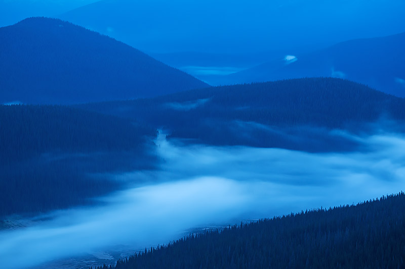 It's before dawn on a cool, late summer morning along Trail Ridge Road. Fog and mist has settled into the Poudre Valley just...