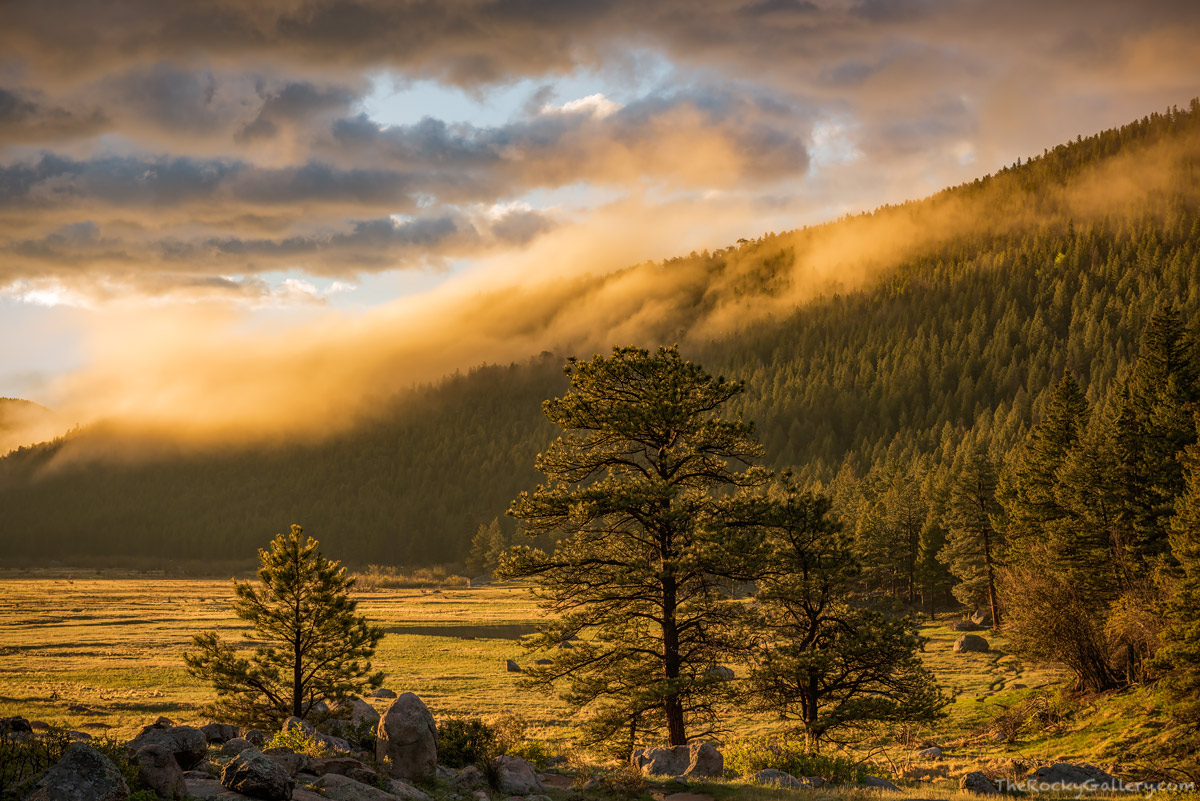 Moraine Park,Sunrise,Landscape,Photography,RMNP,Colorado,Fog,South Lateral Moraine,Rocky Mountain National Park,Estes Park,May