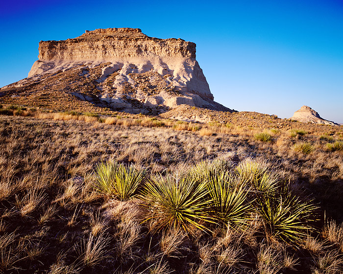 Pawnee Buttes, Grasslands, Eastern Plains, Weld County, Yucca, photo