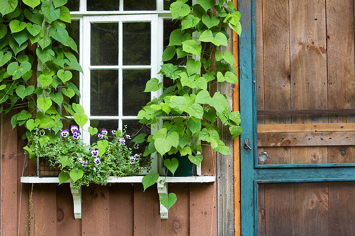 Elmira, New York, Finger Lakes, Potting Shed, Window and Door, photo