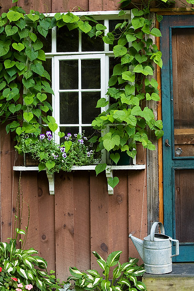 Potting Shed Window and Door in the Finger Lakes Region of New York
