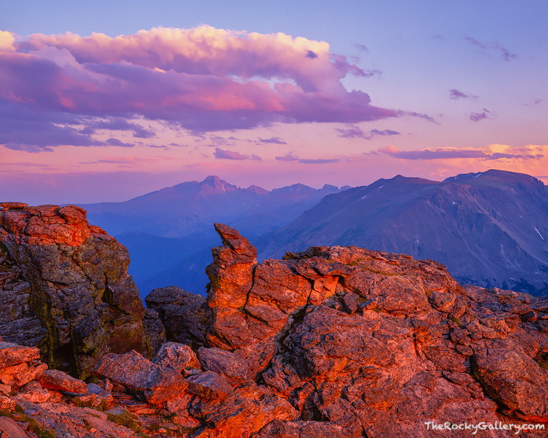 Last light hits the Divide. Longs Peak turns pink in this view from the Rock Cut along Trail Ridge Road. Trail Ridge Road is...