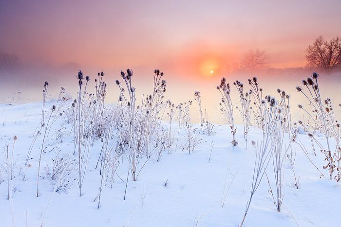 Boulder, Colorado, Sawhill Ponds, OSMP, Open Space, Sunrise, Winter, photo