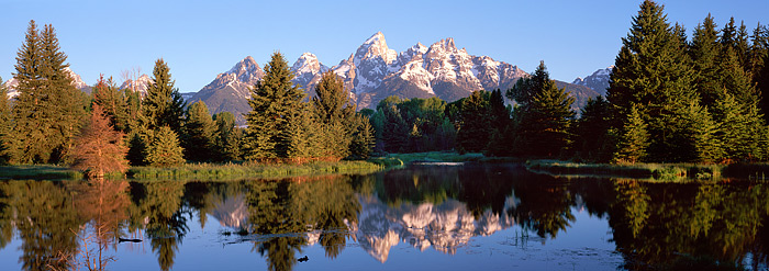 Grand Teton National Park, Wyoming, Schwabacher's Landing, Snake River, photo